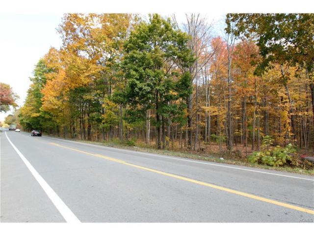 Route 300, Newburgh, NY 12550 (MLS #4701335) :: Mark Boyland Real Estate Team