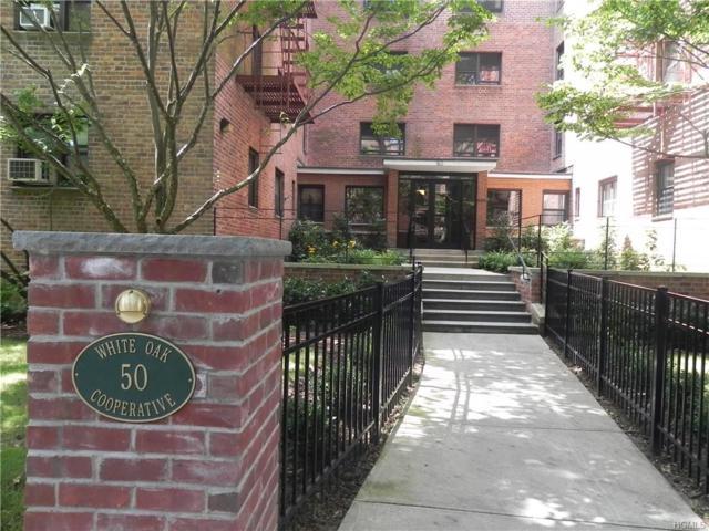50 White Oak Street 2F, New Rochelle, NY 10801 (MLS #4702263) :: Mark Boyland Real Estate Team