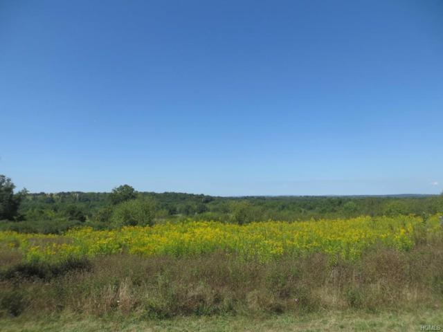 Lot 7 Far View Lane, Campbell Hall, NY 10916 (MLS #4702266) :: William Raveis Baer & McIntosh