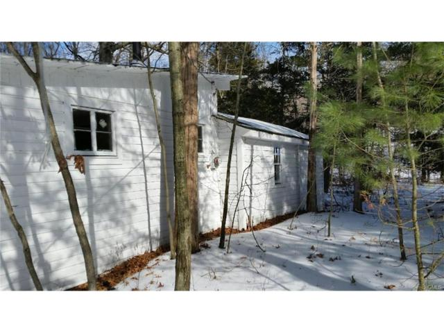 25 Bungalow, Red Hook, NY 12571 (MLS #4704116) :: Mark Seiden Real Estate Team