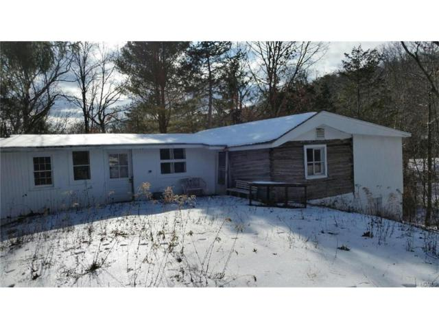24 Bungalow, Red Hook, NY 12571 (MLS #4704131) :: The Anthony G Team
