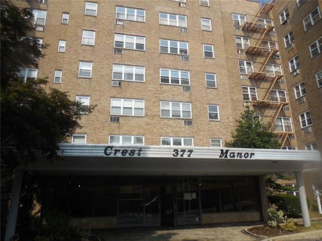 377 N Broadway #326, Yonkers, NY 10701 (MLS #4706921) :: Mark Boyland Real Estate Team