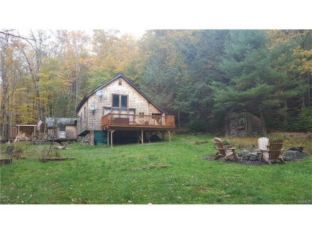 7 Apple Creek Road, Grahamsville, NY 12725 (MLS #4707374) :: Michael Edmond Team at Keller Williams NY Realty