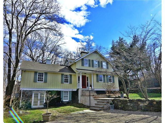 89 Washington Spring Road, Palisades, NY 10964 (MLS #4707770) :: William Raveis Baer & McIntosh