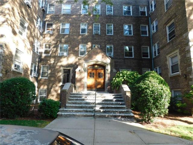 19 William Street 1F, Mount Vernon, NY 10552 (MLS #4710475) :: Mark Boyland Real Estate Team