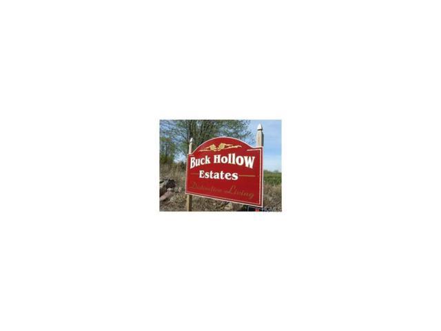 Mitts Way, Campbell Hall, NY 10916 (MLS #4710828) :: Mark Boyland Real Estate Team