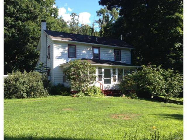 132 Hunns Lake Road, Stanfordville, NY 12581 (MLS #4711731) :: Mark Boyland Real Estate Team