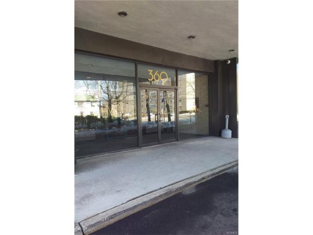 360 Westchester Avenue #315, Port Chester, NY 10573 (MLS #4712214) :: Mark Boyland Real Estate Team