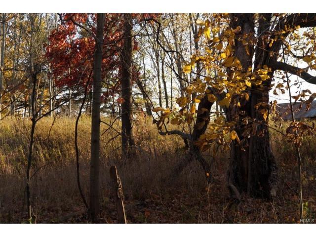 Firwood Road, Wurtsboro, NY 12790 (MLS #4712549) :: Mark Boyland Real Estate Team