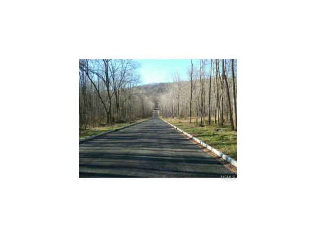 5 Badi Avenue, Nyack, NY 10960 (MLS #4714315) :: Michael Edmond Team at Keller Williams NY Realty