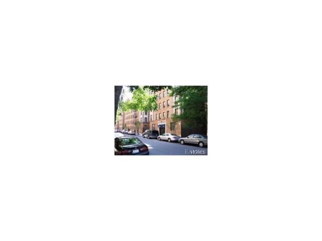 2199 Holland Avenue 3K, Bronx, NY 10462 (MLS #4714793) :: Mark Boyland Real Estate Team