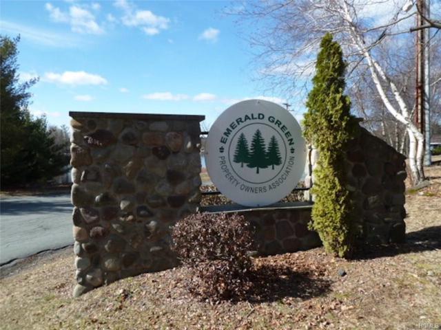 Pond Lane, Rock Hill, NY 12775 (MLS #4714870) :: Mark Boyland Real Estate Team