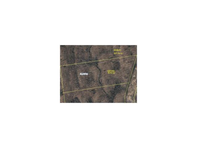Rusky Lane, Hyde Park, NY 12572 (MLS #4714895) :: Mark Boyland Real Estate Team