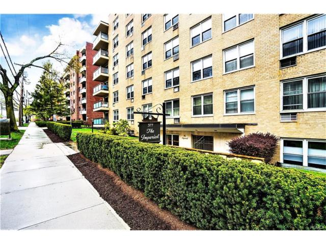 377 Westchester Avenue Lj, Port Chester, NY 10573 (MLS #4717117) :: William Raveis Legends Realty Group