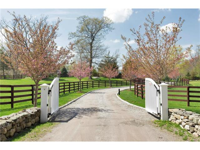 18 Schoolhouse Road, Pound Ridge, NY 10576 (MLS #4718560) :: Mark Boyland Real Estate Team