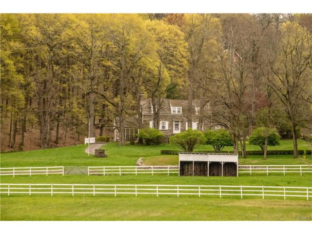 115 Buck Road, Stone Ridge, NY 12484 (MLS #4719167) :: Mark Boyland Real Estate Team