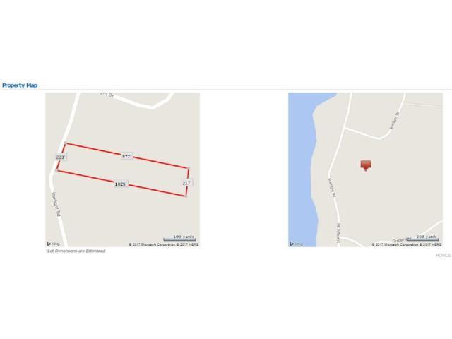 Starlight Road, Monticello, NY 12701 (MLS #4719658) :: Mark Boyland Real Estate Team
