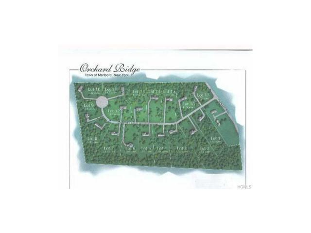 6 Orchard View Drive, Marlboro, NY 12542 (MLS #4720603) :: Mark Boyland Real Estate Team