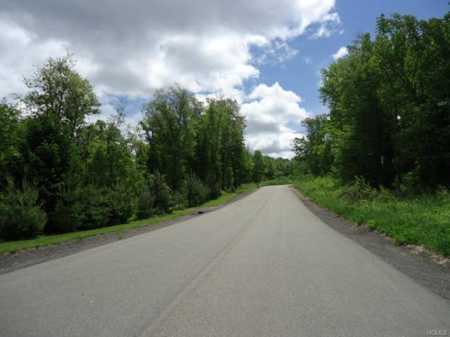26 Orchard View Drive, Marlboro, NY 12542 (MLS #4720605) :: Mark Boyland Real Estate Team