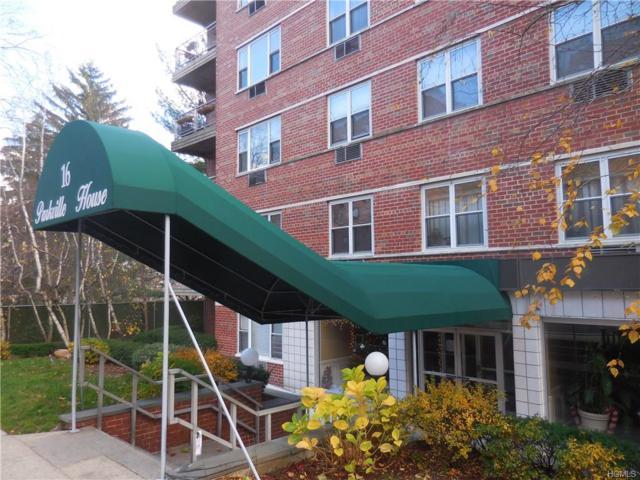 16 Lake Street 6J, White Plains, NY 10603 (MLS #4720993) :: Mark Boyland Real Estate Team