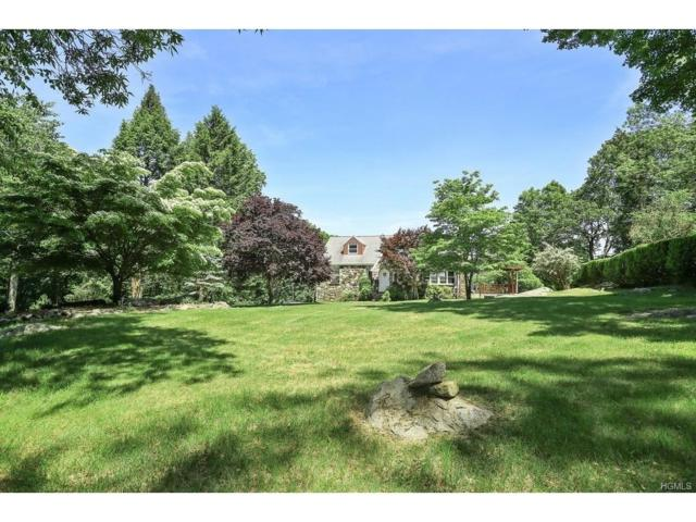 38 Wood Dale Avenue, Croton-On-Hudson, NY 10520 (MLS #4721352) :: William Raveis Legends Realty Group