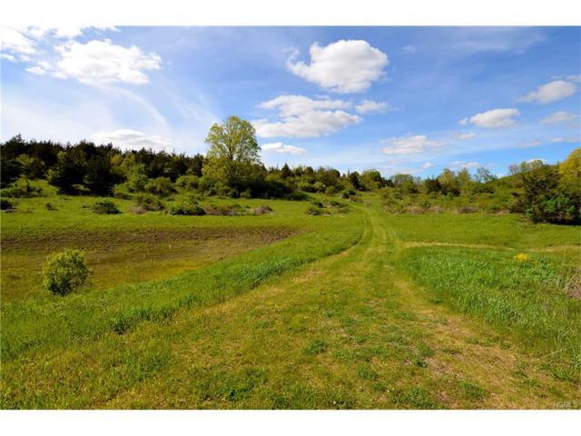 Lot 3 Westerly Ridge Drive, Amenia, NY 12501 (MLS #4722053) :: Mark Boyland Real Estate Team