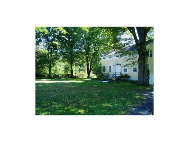 26 Fairview Avenue, High Falls, NY 12440 (MLS #4722211) :: Mark Boyland Real Estate Team