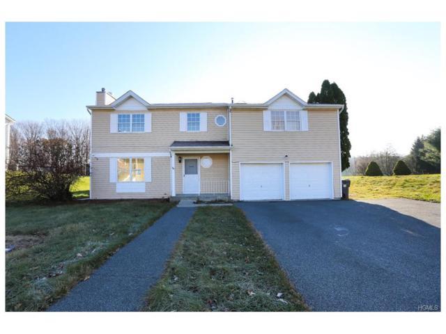 48 Capital Drive, Washingtonville, NY 10992 (MLS #4722452) :: William Raveis Baer & McIntosh