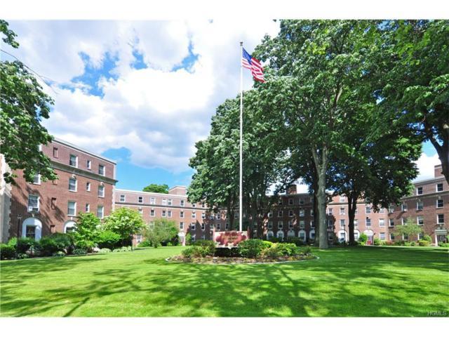 445 Gramatan Avenue Id1, Mount Vernon, NY 10552 (MLS #4723810) :: Mark Boyland Real Estate Team