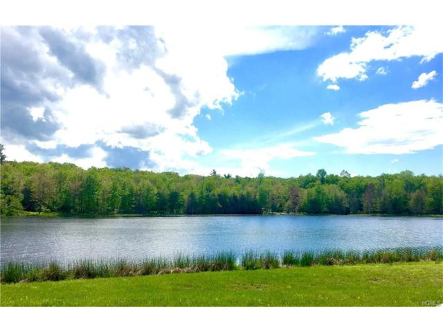 Lot 27 Pine Lake Drive, Wurtsboro, NY 12790 (MLS #4725615) :: Mark Boyland Real Estate Team