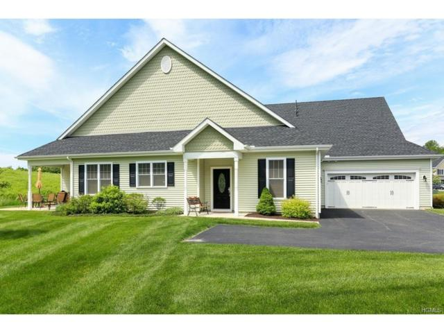 23 Yesterday Drive, Cold Spring, NY 10516 (MLS #4726026) :: Mark Boyland Real Estate Team