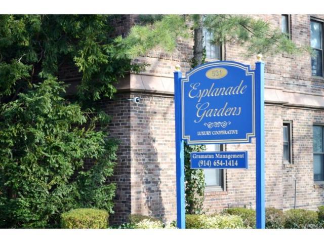 531 E Lincoln Avenue 6I, Mount Vernon, NY 10552 (MLS #4726071) :: Mark Boyland Real Estate Team