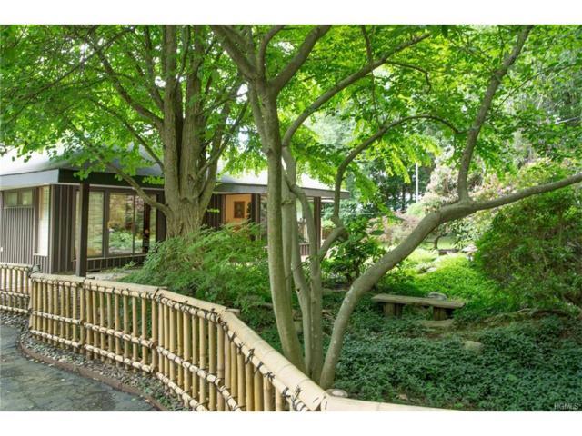 62 Floyd Ackert Road, West Park, NY 12429 (MLS #4726233) :: Mark Boyland Real Estate Team