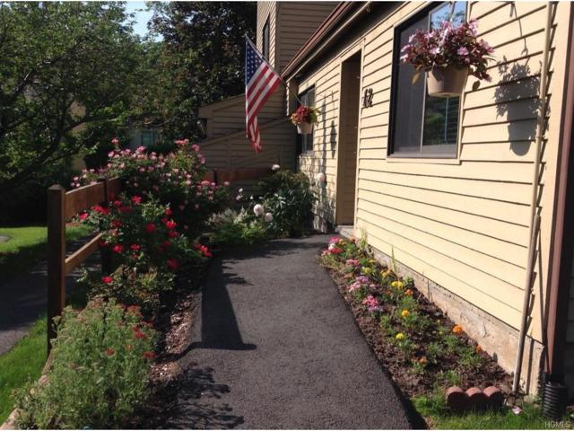 12 Sycamore Court, Highland Mills, NY 10930 (MLS #4727101) :: William Raveis Baer & McIntosh