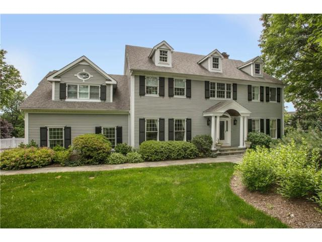 105 Hirst Road, Briarcliff Manor, NY 10510 (MLS #4727174) :: William Raveis Legends Realty Group