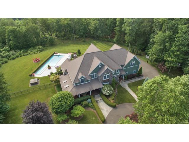 9 1st Class Marsico Court, Blauvelt, NY 10913 (MLS #4727190) :: William Raveis Baer & McIntosh