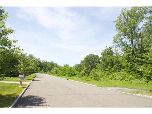 40 Juniper Terrace, Tuxedo Park, NY 10987 (MLS #4727357) :: Mark Boyland Real Estate Team