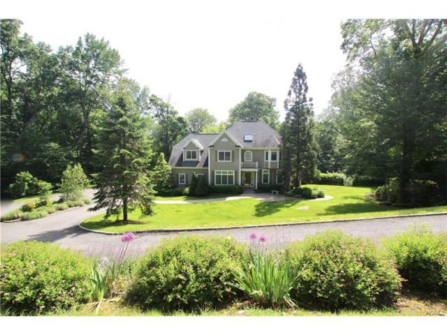 33 Brundige Drive, Goldens Bridge, NY 10526 (MLS #4727397) :: Mark Boyland Real Estate Team