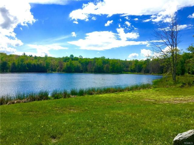 Lot 26 Pine Lake Drive, Wurtsboro, NY 12790 (MLS #4728197) :: Michael Edmond Team at Keller Williams NY Realty