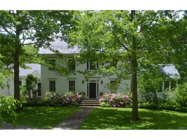 43 Blueberry Hill Road, Chatham, NY 12136 (MLS #4728262) :: Mark Boyland Real Estate Team