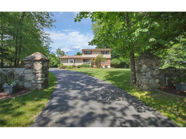 172 Pine Tree Road, Monroe, NY 10950 (MLS #4728317) :: William Raveis Baer & McIntosh