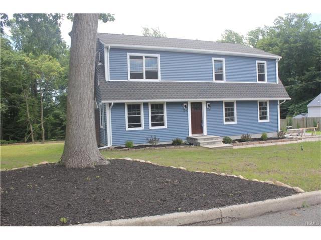 105 Gatto Lane, Pearl River, NY 10965 (MLS #4728324) :: William Raveis Baer & McIntosh