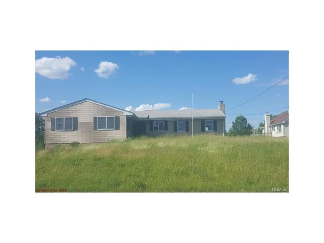 2432 State Route 17K, Montgomery, NY 12549 (MLS #4728370) :: William Raveis Baer & McIntosh