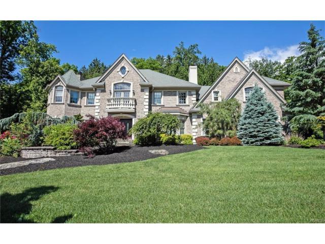 4 Dorsey Court, Orangeburg, NY 10962 (MLS #4728534) :: William Raveis Baer & McIntosh