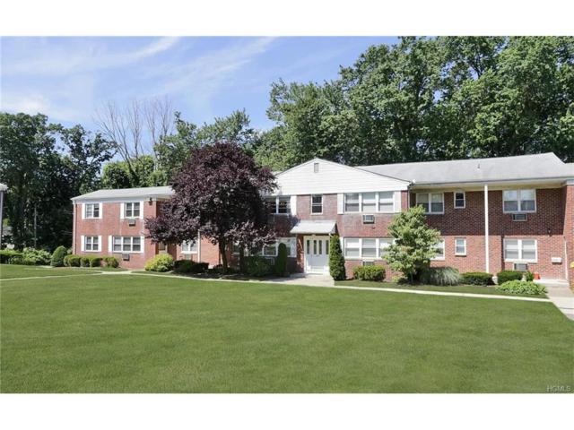 225 N Middletown Road E, Pearl River, NY 10965 (MLS #4728585) :: William Raveis Baer & McIntosh