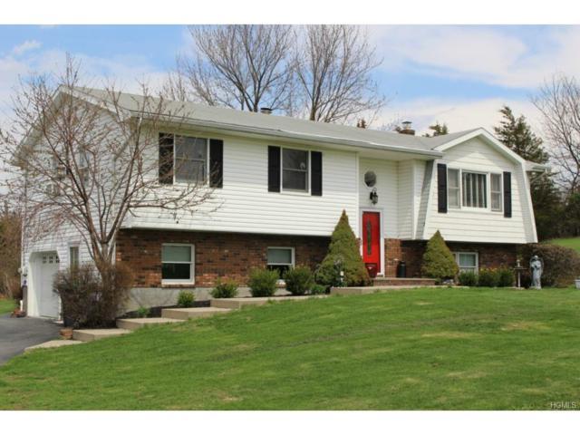 5 Meadow Hill, Warwick, NY 10990 (MLS #4728674) :: William Raveis Baer & McIntosh