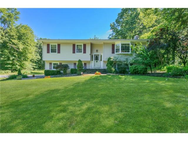 897 Craigville Road, Chester, NY 10918 (MLS #4728739) :: William Raveis Baer & McIntosh