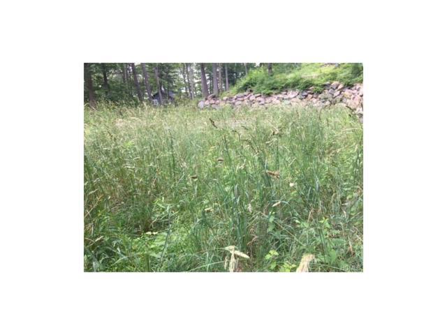 47 Wah Ta Wah Drive, Greenwood Lake, NY 10925 (MLS #4728978) :: William Raveis Baer & McIntosh