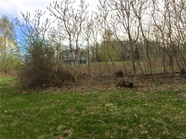 7 Eagle Wood Vista, Warwick, NY 10990 (MLS #4729213) :: Michael Edmond Team at Keller Williams NY Realty