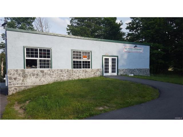 5092 S Fallsburg Main Street, Fallsburg, NY 12733 (MLS #4729265) :: Mark Boyland Real Estate Team